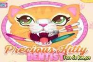 Gatos en el dentista