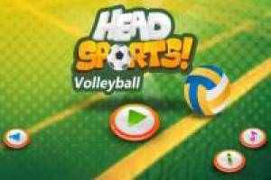 Head Sports: Volleyball