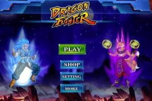 Dragon Ball Fighter