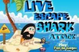 Free Escape from shark attack Game
