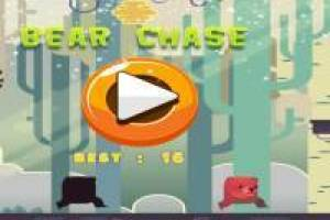 New Bear Chase