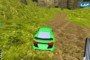 Course automobile dans la jungle