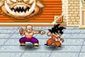 Dragon Ball Goku Fighting