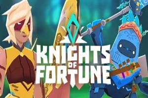 Knights Of Fortune 3D