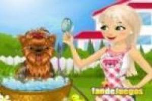 Doggy Spa: Perros