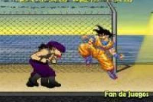 Survivances de dragon ball
