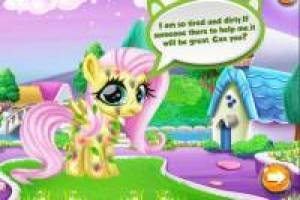 Take care of our little pony