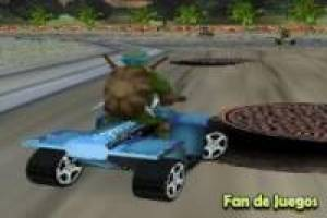 Ազատ Ninja Turtles: Racing 3d Խաղալ