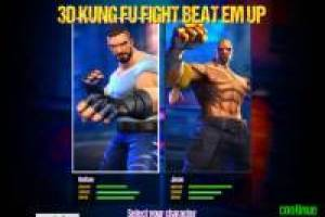 Kung Fu 3D fight