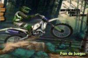 Motocross race in the forest