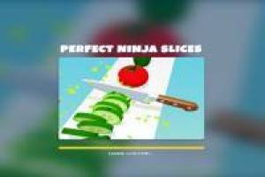Perfect Ninja Slices