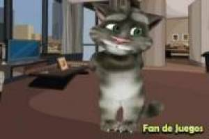 Decorates the house Talking Tom
