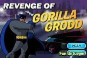 Batman vs gorila