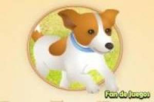 Gratis Pop Top Pups Spelen