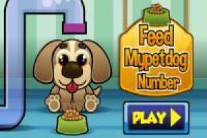 Feed Mypetdog Numbers