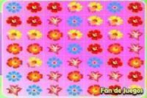 Free Flower Frenzy Game
