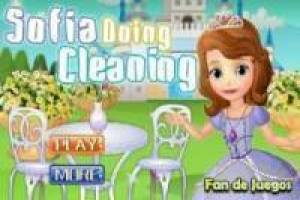Sofia clean the kingdom