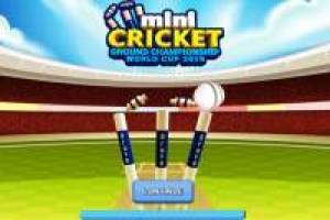 National Cricket Cup