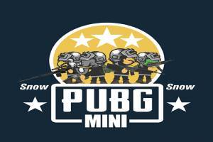 PUBG: Mini Snow Multiplayer