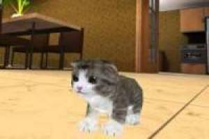 Gato Simulador Craft 3D