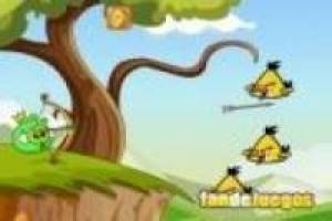 Angry birds: Bad pig defense