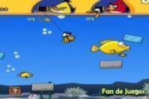 Juego Angry birds double fishing Gratis