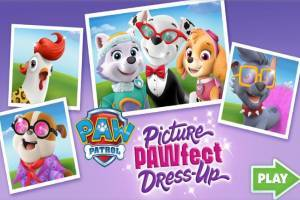 Paw Patrol: Picture Pawfect Dress-up