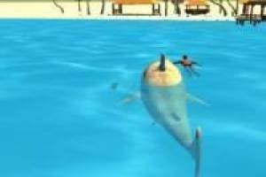 Shark Simulation