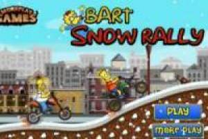 Bart Snow Rally