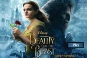 Beast and the Beautiful: Hidden Numbers