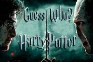Wie is wie? Harry Potter