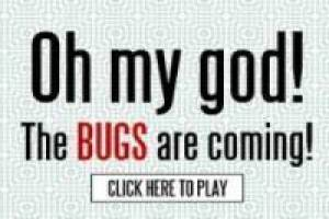OMG: Bugs are coming